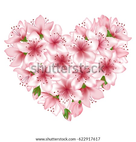 Spring tree blossom flowers heart vector illustration isolated on white. Floral heart love symbol. Japanese cherry, peach or apple tree blossom flowers vector. Pink blooming elements graphic design.