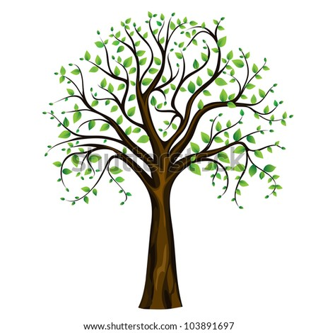 Spring tree on the white background, vector image