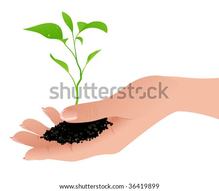 Sprout in the human hand, vector illustration, EPS file included