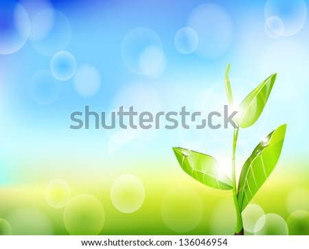 sprout with drops of water and patches of sunlight on the background of sky and grass vector - stock vector