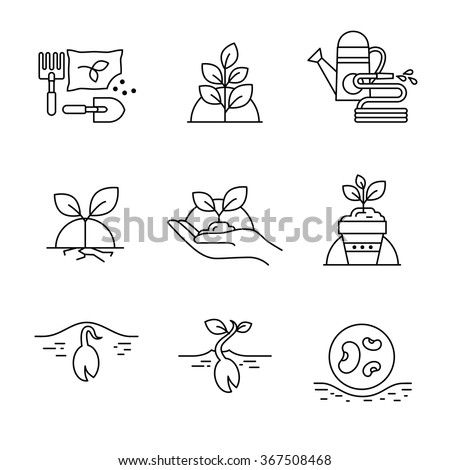 Sprouting seeds and home gardening Thin line art icons. Linear style illustrations isolated on white. - stock vector