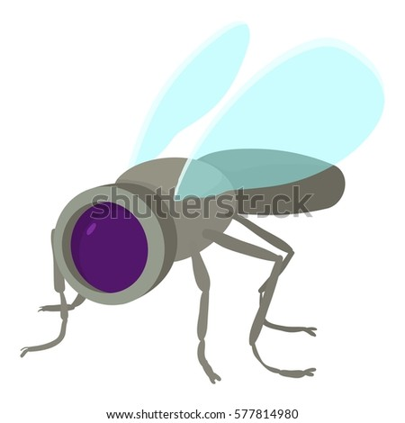The housefly the most annoying insect ever