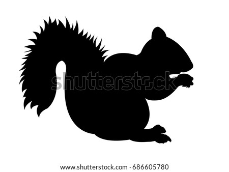 squirrel vector stock images royaltyfree images