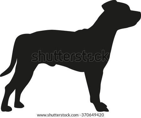 Staffordshire Bull Terrier silhouette - stock vector