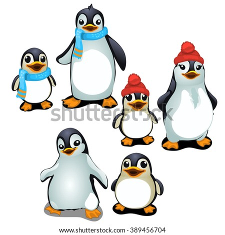 Stages of puberty penguins. Animals isolated on a white background. Vector illustration.