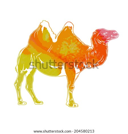 standing in profile colored camel stylized silhouette isolated on white