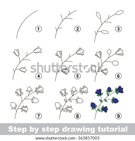 how to draw a narwawl tutorial