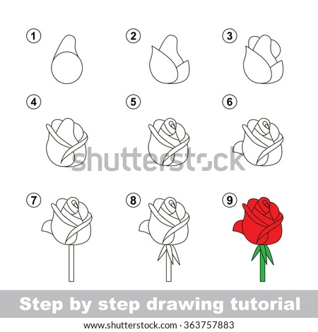 Step By Step Drawing Tutorial Vector Stock Vector