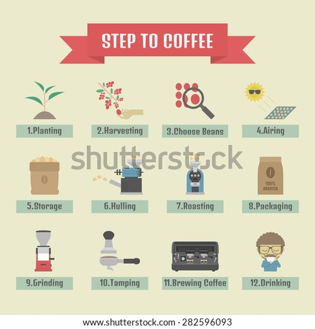 step by step, from beans to cup, coffee infographic, flat icon