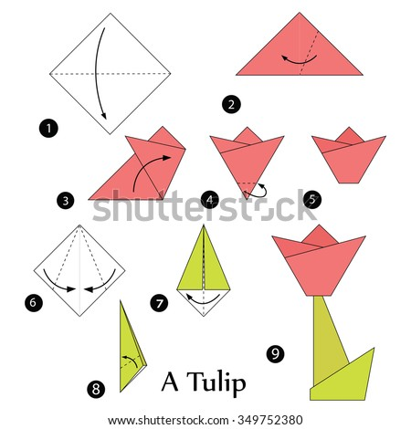 Step By Instructions How To Make Origami A Tulip