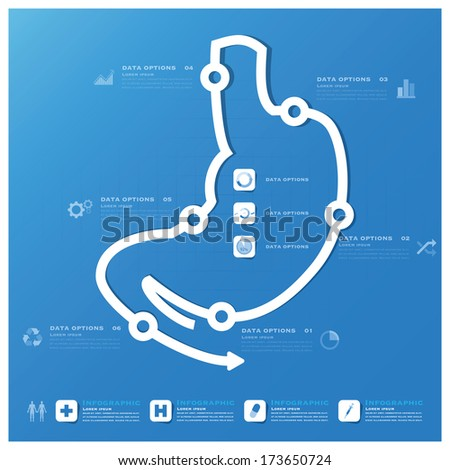 Stomach Shape Business And Medical Infographic Design Template - stock vector