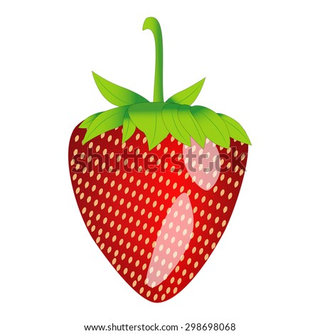 strawberries isolated on a white background - stock vector