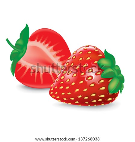 strawberry and half fruit isolated on white - stock vector