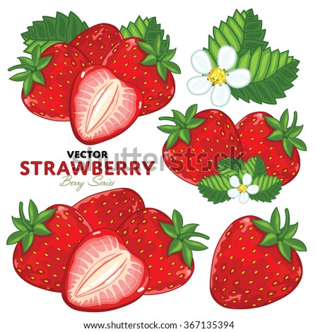 Strawberry Isolated on White Background. Set Strawberry Compositions, Strawberry Leaves, Strawberry Vector, Cartoon illustration of Strawberry. Bunch of Juicy Strawberry Berries. - stock vector