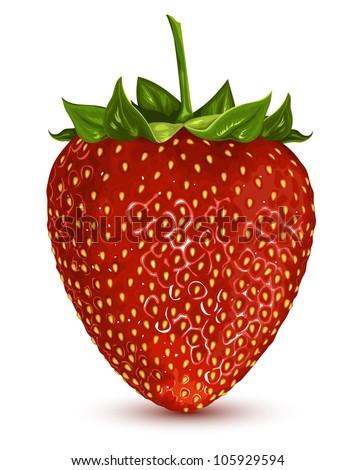 Strawberry. vector illustration EPS 8. No mesh, no gradients - stock vector
