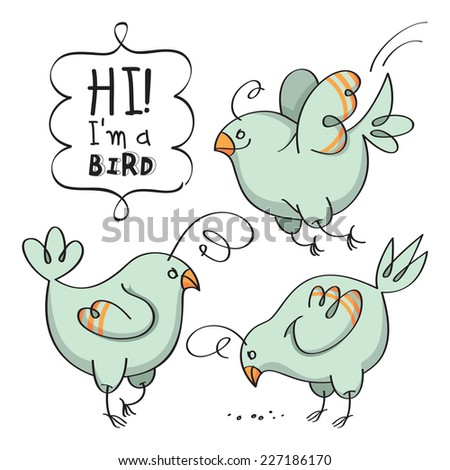 Stylish bird in various poses and situations. Set of birds. Vector illustration - stock vector