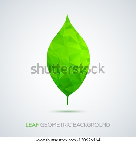 Stylish geometric leaf isolated on white background. Vector illustration. - stock vector