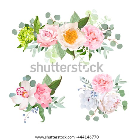 Stylish various flowers bouquets vector design set. Green hydrangea, rose, camellia, orchid, peony, anemone, carnation, eucaliptus leaf, wildflowers. All elements are isolated and editable. - stock vector