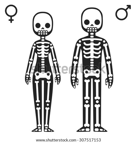 cartoon skeleton stock images, royalty-free images & vectors, Skeleton