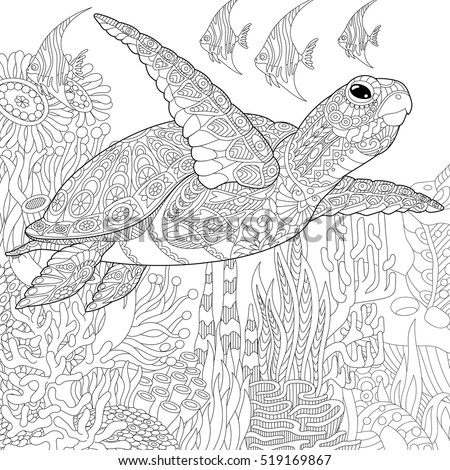 likewise  furthermore  further  as well frog hi also  besides  also  also cat coloring page 19 besides Free Frog Coloring Pages in addition pTqdjgaT9. on free printable adult coloring pages frogs