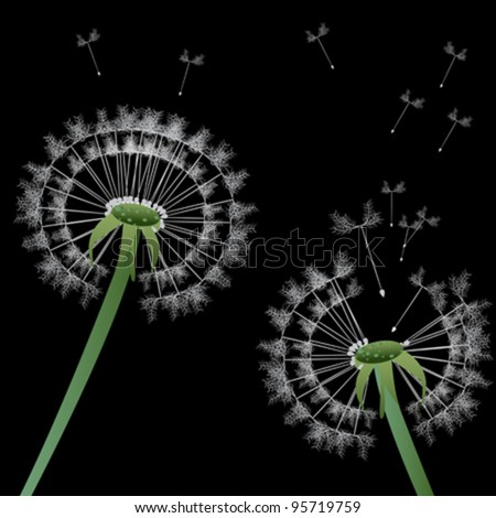 Stylized dandelions in the night - stock vector