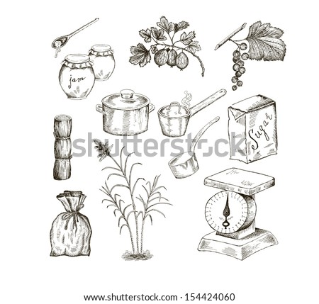 sugar. set of vector sketches - stock vector