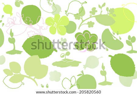 summer background of leaves, grass, flowers in pale shades of green