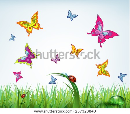 Summer background with flowers butterflies and ladybugs, illustration. - stock vector