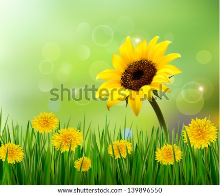 Summer background with yellow flowers and grass. Vector. - stock vector