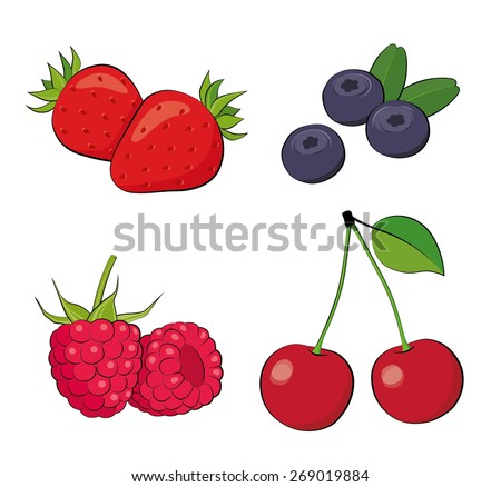 Summer berries. Strawberry, blueberry, raspberry, cherry. - stock vector
