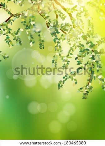 Summer branch with fresh green leaves.  - stock vector
