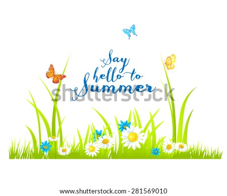 Summer flowers and green grass. Nature illustration with place for text. - stock vector