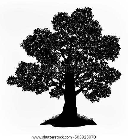 Summer Landscape Oak Tree with Leaves and Grass Black Silhouettes Isolated on White Background. Vector