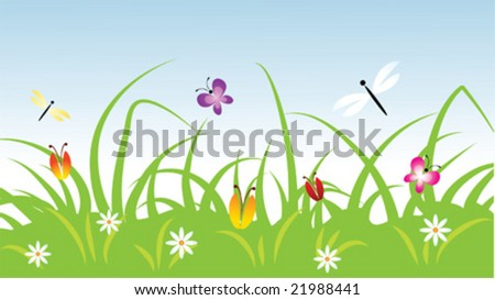 summer meadow vector illustration