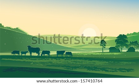 Summer morning. Rural Landscape and cows. - stock vector
