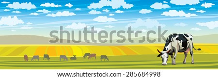 Summer rural landscape with cow and green meadow on a blue cloudy sky.  - stock vector