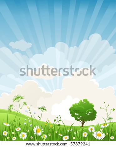 Summer scenery - stock vector
