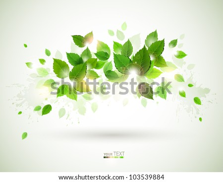 Summer shine on the branch with fresh green leaves - stock vector