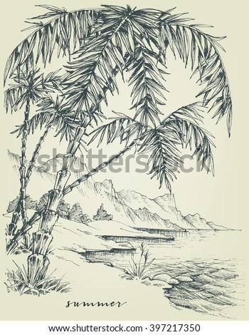 Summer sketch. Palm trees on the beach - stock vector