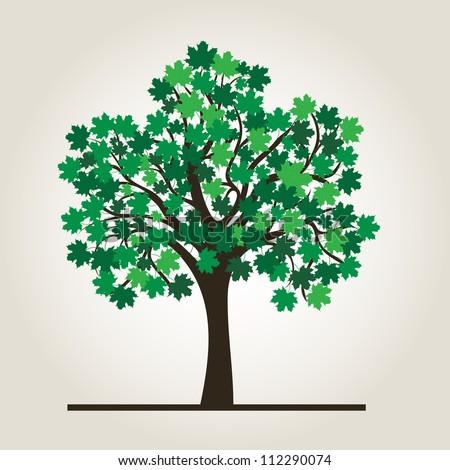 Summer tree maple, vector background for design - stock vector