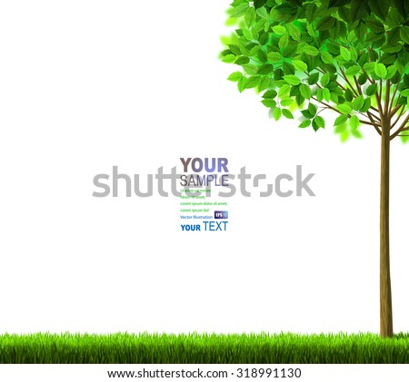 Summer tree with green leaves on the glade. - stock vector
