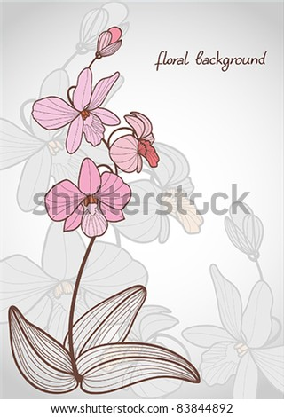 Summer vector with bloom pink orchid on a gray background - stock vector
