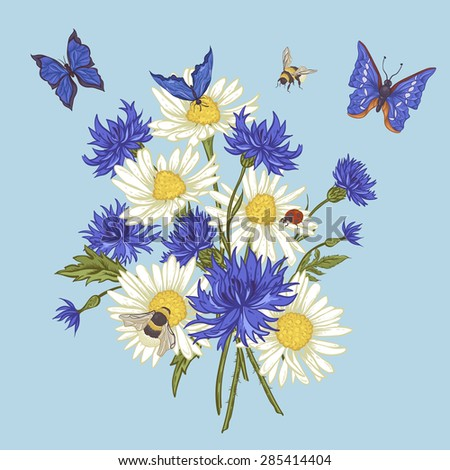 Summer Vintage Floral Bouquet. Greeting Card with Blooming Chamomile Ladybird Daisies Cornflowers Bumblebee Bee and Blue Butterflies. Vector Illustration on Blue Background - stock vector