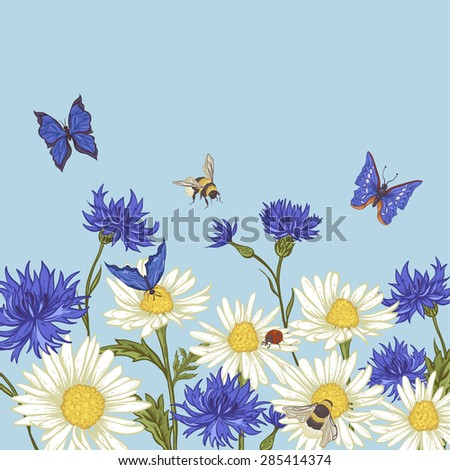 Summer Vintage Greeting Card with Blooming Chamomile Daisies Ladybird Cornflowers Bumblebee Bee and Blue Butterflies. Vector Illustration on Blue Background - stock vector