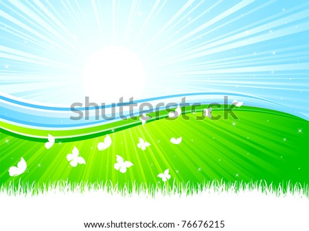Sunburst background with Butterfly, illustration - stock vector