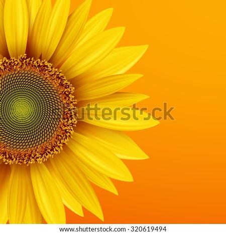 Sunflower background, yellow flower over orange autumn  background, vector illustration. - stock vector