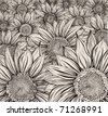 Sunflower field - stock vector
