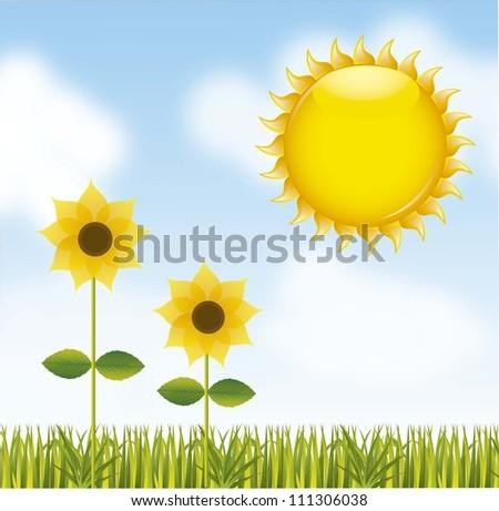sunflower over landscape with sun. vector illustration - stock vector