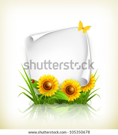 Sunflowers and paper, vector - stock vector