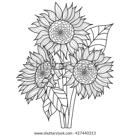 Collectionsdwn Sunflowers Coloring Pages For Adults on adu